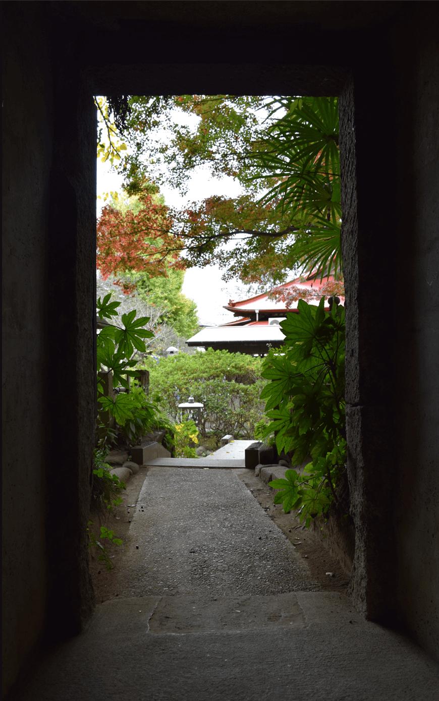 洞窟の入り口の画像